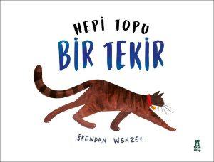 hepi_topu_bir_kedi